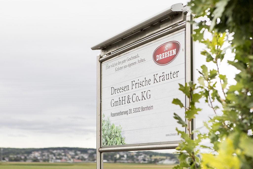 Frische Kräuter Bornheim