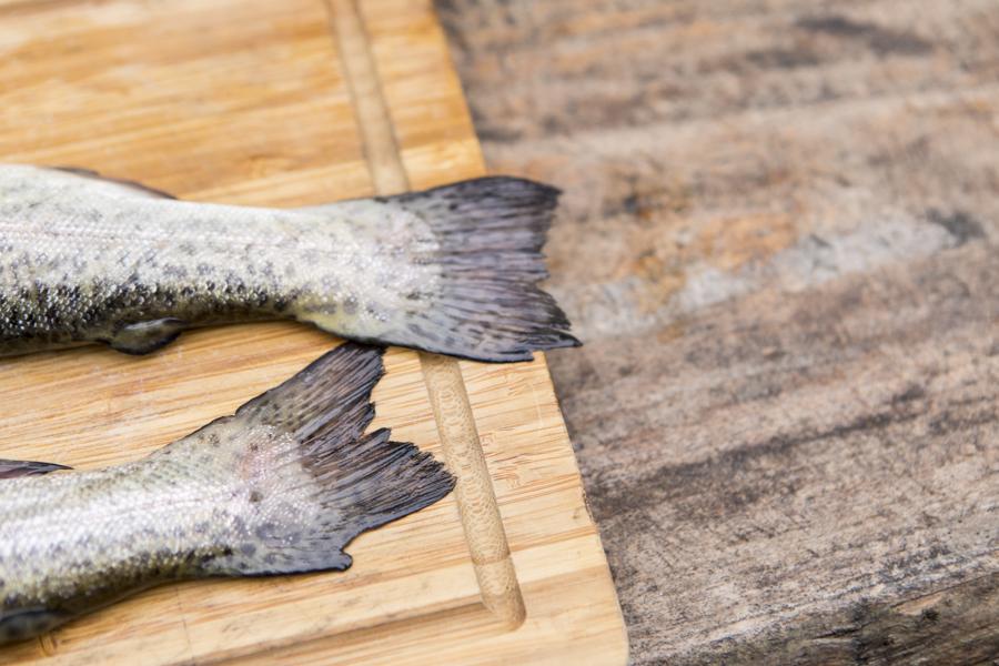 Grillrezept Forelle